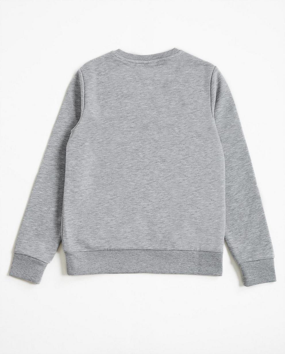 Sweater - Blassgrau -